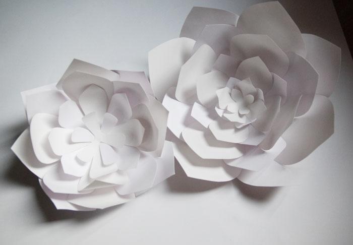 fleur-volume