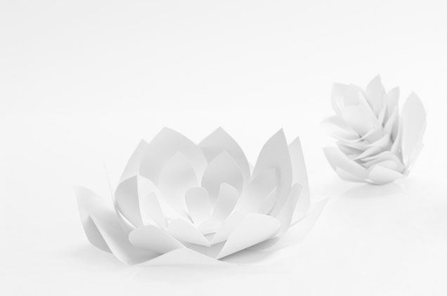 fleurs-choux-artichaut SET DESIGN PAPER POUR LE CATALOGUE LALIQUE CRISTAL - COLLECTION LANGUEDOC AH 2015, INSTALLATION ET CRÉATION DE VÉGÉTAUX EN PAPIER BLANC, KIRIGAMI, PAPIER DÉCOUPÉ, PARIS 2015, LAURE DEVENELLE