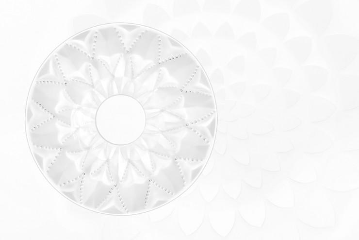 rosace Languedoc SET DESIGN PAPER POUR LE CATALOGUE LALIQUE CRISTAL - COLLECTION LANGUEDOC AH 2015, INSTALLATION ET CRÉATION DE VÉGÉTAUX EN PAPIER BLANC, KIRIGAMI, PAPIER DÉCOUPÉ, PARIS 2015, LAURE DEVENELLE