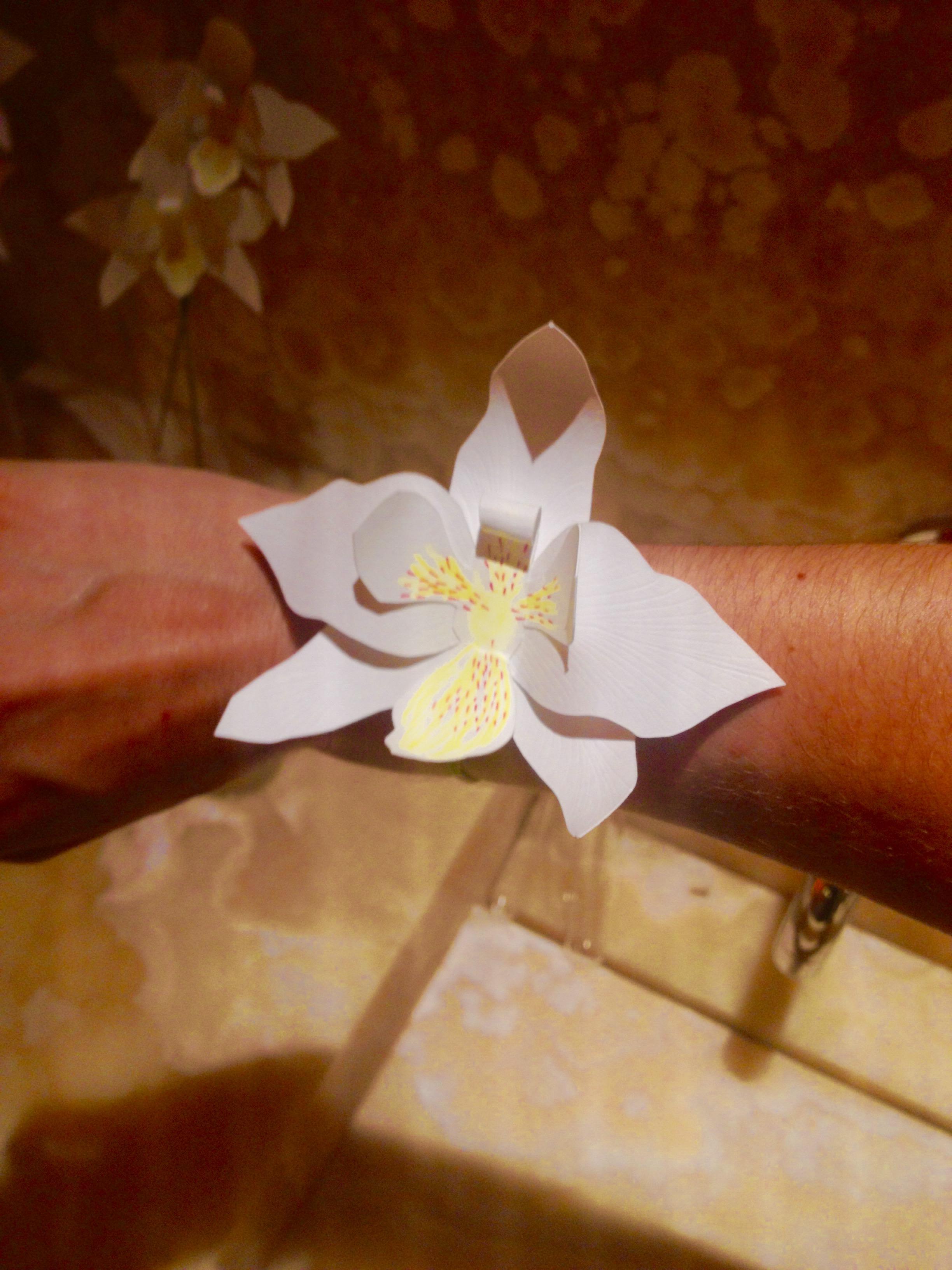 Laure Devenelle Designer Papier Scenographe Origamiste Kirigamiste