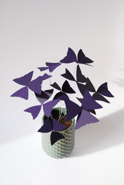 Oxalys-paper-plant-art-du-papier-purple-nature-2018-laure-devenelle