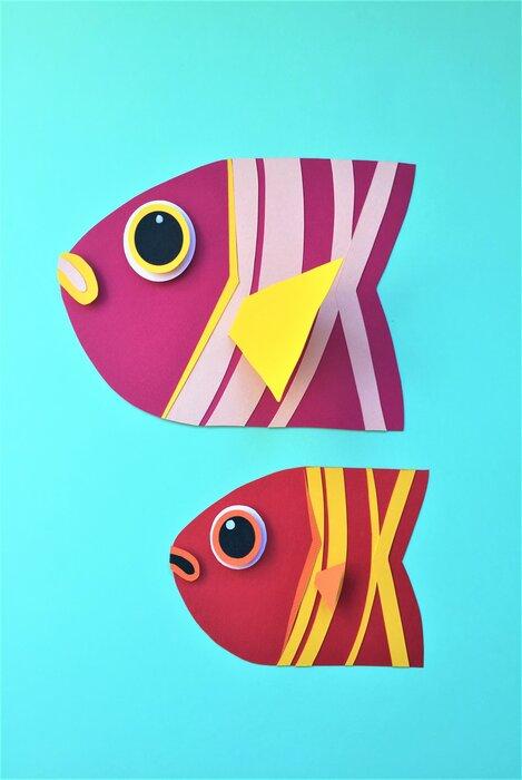 poissons-rayé-coloré-fish-paper-art-scenographie-de-vitrine-pour-Muriel-gants-Paris-Laure-Devenelle
