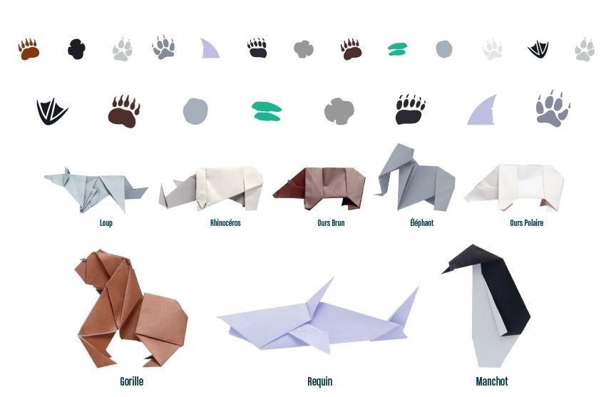 Origami-animaux-en-voie-de-disparition-wwf-pas-emprunte-générale-d-optique-Laure-Devenelle